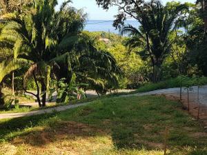 Jungle Reef Road, Sea Garden Lot 2, Sandy Bay, Roatan,