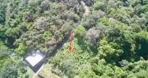 Quarter acre Lot, Roatan,