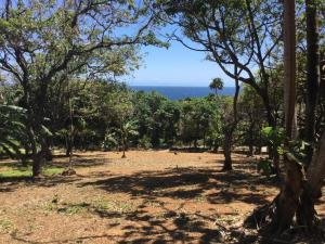 Lot 10, Latitude 16, Roatan,