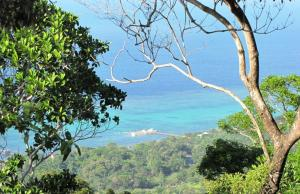 Opportunity in Sandy Bay, La Selva Development, Roatan,