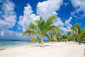 Condo 2 Bedroom 2 Bath, Coral Sands Beach Front!, Roatan,