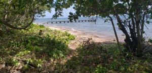 Camp Bay, 2 acres beachfront, Roatan,