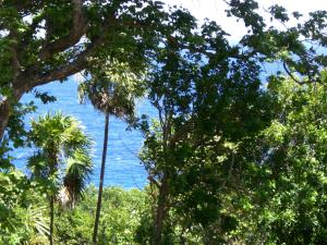 Lighthouse Estates, Lot 2, Roatan,