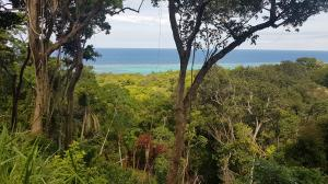 White Rock Hills, Lot 1, Roatan,