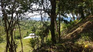 White Rock Hills, Lot 5, Roatan,