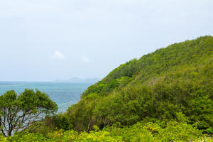 New Port Royal: 14 Acres!, Roatan,