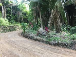 Palmetto Bay: Lot 1 & 2, Roatan,