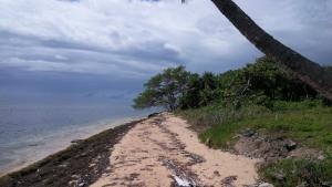 Southside of St. Helene Island, 1 Acre, 55 Ft of Beachfront, Roatan,