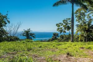 French View, Flat Hilltop Lot, Roatan,