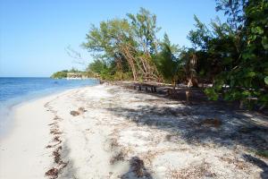 - Pine Point, 0.426 Acres Beachfront, Utila,