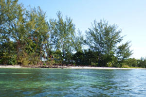 - Pine Point, 0.85 Acre Beachfront, Utila,