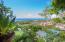 West Bay, Parrot House, Roatan,