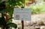 Wellness Resort, Upachaya Eco-Lodge and, Roatan,