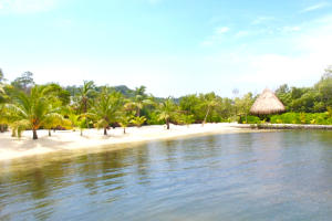 Only $39,000, Coral Views Lot #139, Roatan,