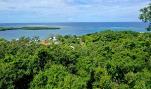 Fabulous View for $40,000, Roatan,