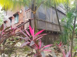 Sandy Bay, Sundancer 3B, Roatan,