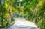 Coral Views #90, Greens, Blues & Breezes, Roatan,
