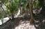 20190315014124283289000000-o Overlooking the Marina, Lot 133, Parrot Tree, Roatan, (MLS# 19-113)