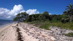 1 Acre, 55 Ft of Beach, Beachfront Property St. Helene, Roatan,