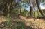 Turtle Beach Rd, 2.16 acres of great potential, Roatan,
