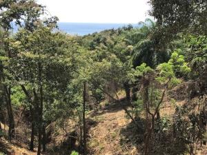 Turtle Beach Rd, Build Your Dreams on 2 acres, Roatan,