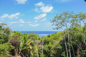 Stunning ocean views from this large hillside lot in Palmetto Bay