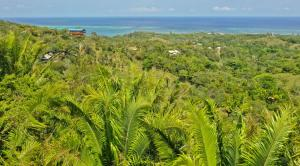 Views of both sides of Roatan, Roatan,