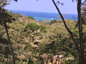 Turtliing Bay Lot 7, Roatan,