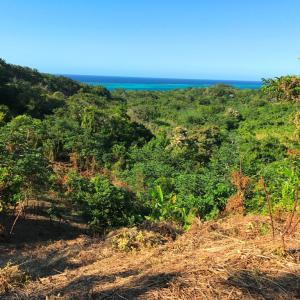 Lot 17 - Ocean View, Roatan,