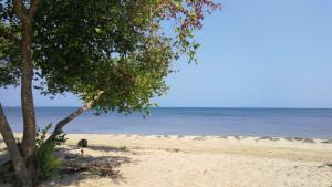 Beachfront, Crawfish Rock, 2.7 Acres with 183 Ft of, Roatan,