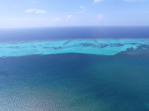 Blue Ocean Reef, Stunning Turquoise Views, Roatan,