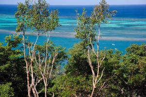 Punta Blanca, Waterfront Estate Sized Lot -, Roatan,