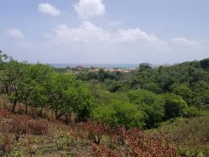 near Pristine Bay, Vista Hermosa 3, Roatan,