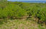 Great property for development, 9.4 acres on West Bay Road., Roatan,