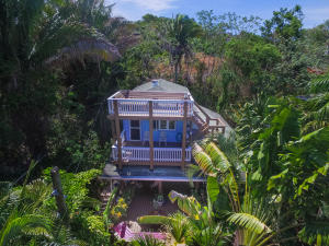 Aerial view of Banana House