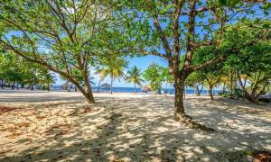 Palmetto Bay, Plantation, Beachfront Homesite Lot 5, Roatan,