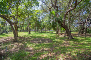 Mature trees on this 0.55 acre lot.