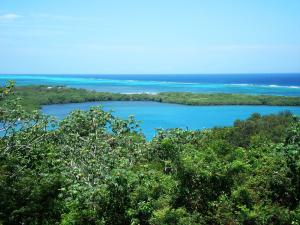 Ocean View - Beach Access Lot, Roatan,