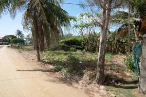 1/3 acre in Jonesville Point, Roatan,