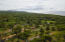 Lush vegetation surrounding Diamond Rock Resort