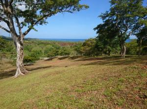 Views from one of the multiple potential sites for your home.