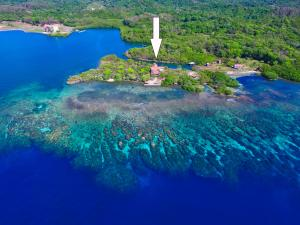 La Joya Caribeña, Parrot Tree, Waterfront Estate Home, Roatan,