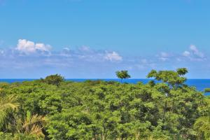 Incredible value, Ocean view Vistas 11.75 acres, Roatan,