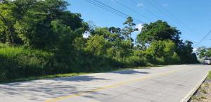Commercial Location Big Bight, Road frontage 241