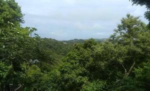 West Bay, Mooncliff Lot #1, Roatan,