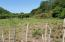 East of Fantasy Island, 1.6 acres Flat, Road Front, Roatan,