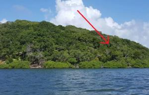 Only, Jonesville, Waterfront Lot #4, Boat Access, Roatan,