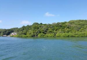 Only, Jonesville, Watefront Lot # 5, Boat Access, Roatan,