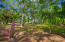 Lawson Rock Lot C2 - This flat ready to build lot has mature trees