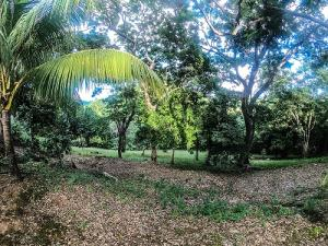 Jonesville Rd., Bodden Bight Estates Lot#10, Roatan,